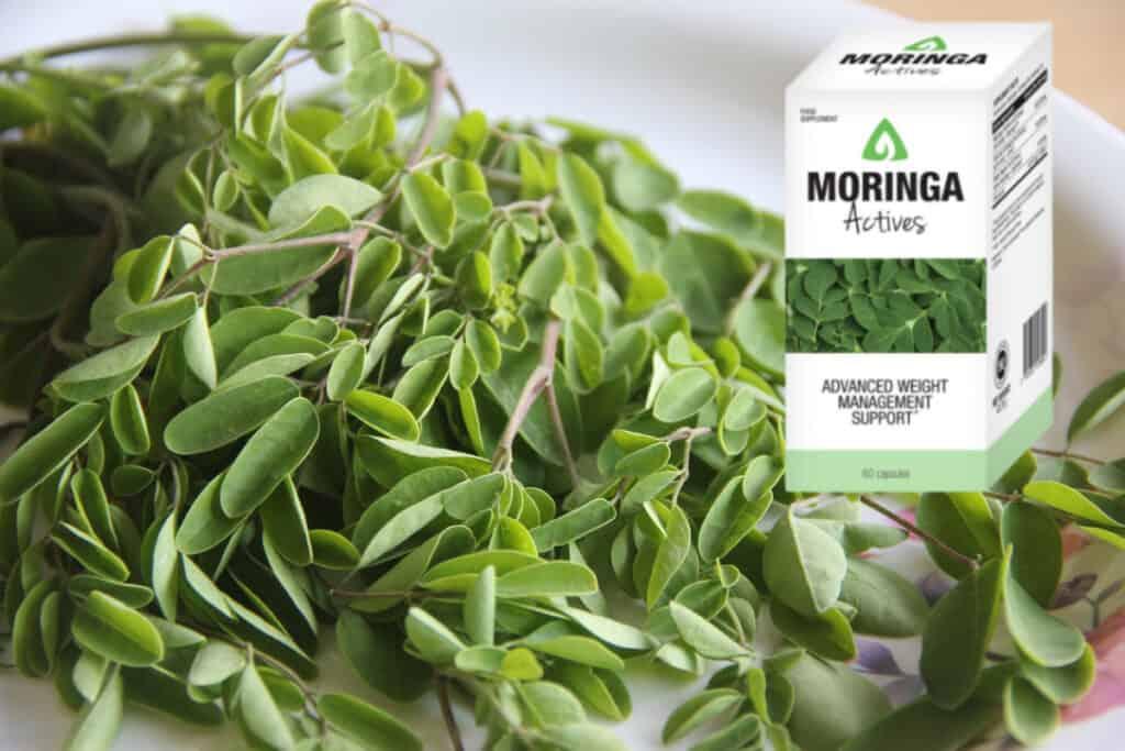 moringa actives összetevők, összetétel